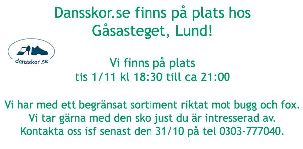 lund-gasasteget-2016-11-01